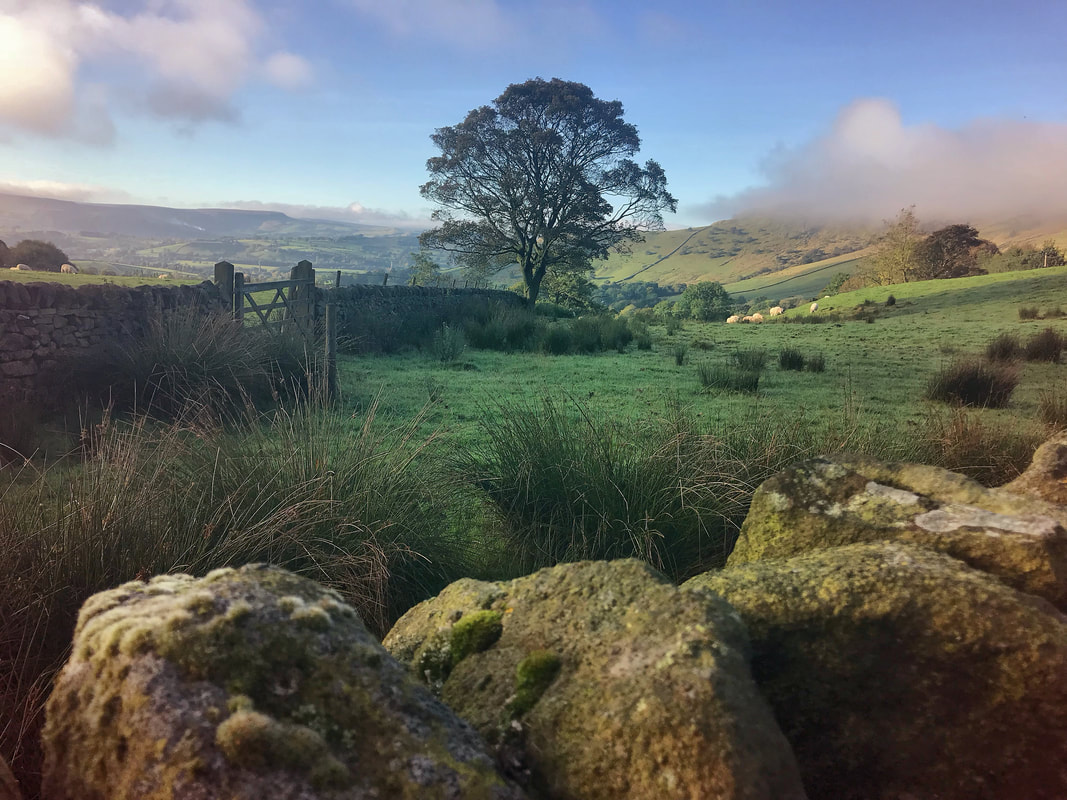 Dry stone walls in the Peak District