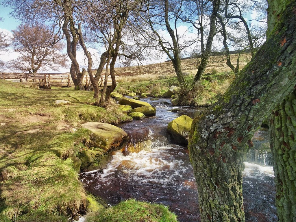 Stream flowing through the Longshaw Estate